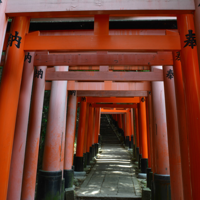 """Fushimi-Inari Taisha shrine, Kyoto"" stock image"