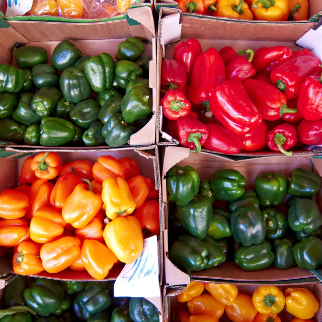 """variety of colorful peppers"" stock image"