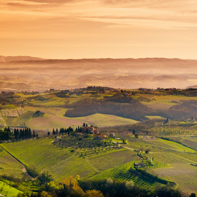 """Tuscan Countryside"" stock image"