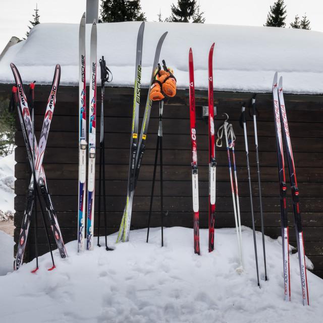 """""""Ski Hut"""" stock image"""
