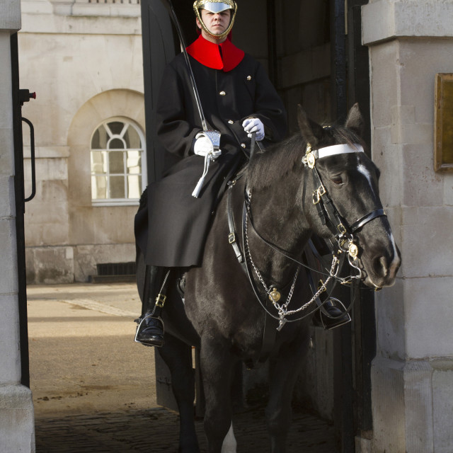 """""""Mounted Member of the Household Cavalry"""" stock image"""