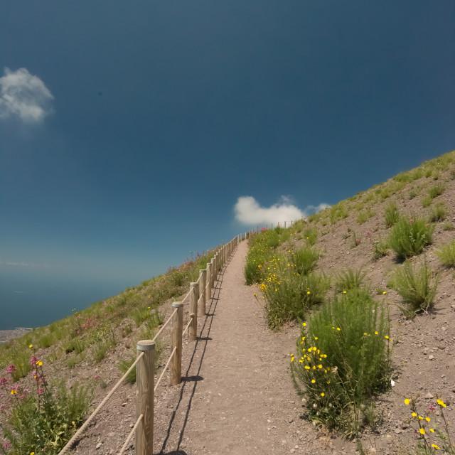 """Climbing Vesuvius"" stock image"