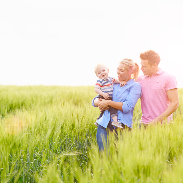 """""""Family Walking In Field Carrying Young Baby Son"""" stock image"""