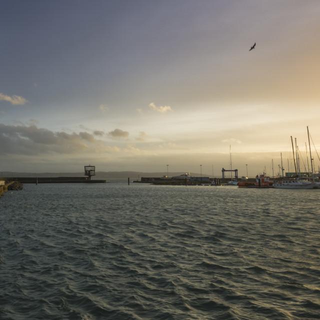 """Carrickfergus Harbour"" stock image"