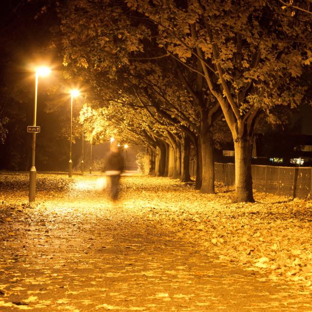 """Path at night"" stock image"