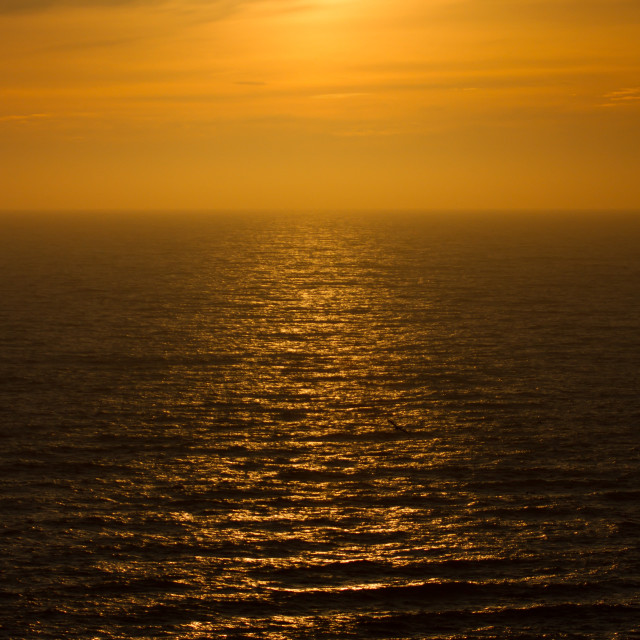 """""""Sunset in the northsea"""" stock image"""