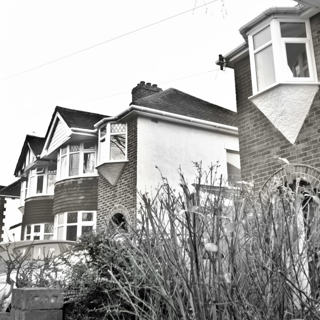 """Suburban houses"" stock image"