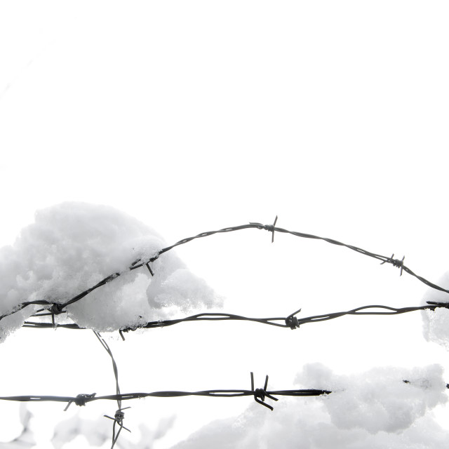 """Barbed Wire In Snow"" stock image"