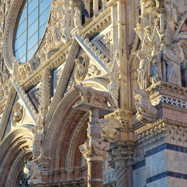 """""""italy, tuscany, siena - architectural detail of siena cathedral"""" stock image"""