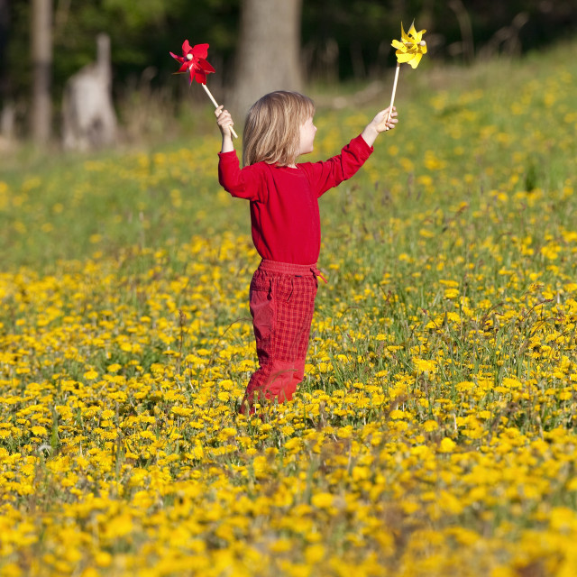"""boy with long blond hair playing with pinwheels on a dandelion meadow"" stock image"