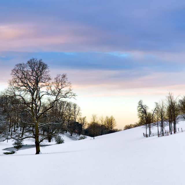 """Countryside snow scene, Cotswolds, UK"" stock image"