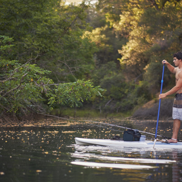 """""""Young Fisherman on a Paddle Board"""" stock image"""