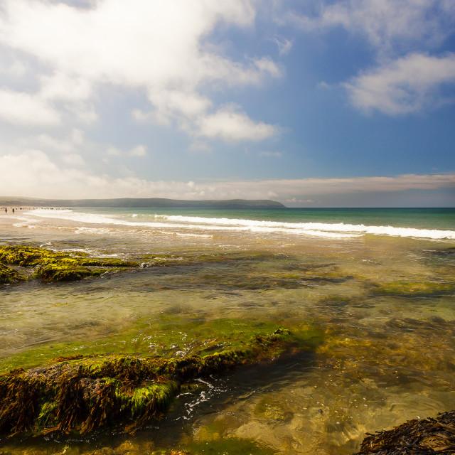 """""""Coastal Landscape"""" stock image"""