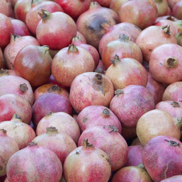 """Pomegranate on Sale, Cambridge Market, Cambridge, United Kingdom"" stock image"
