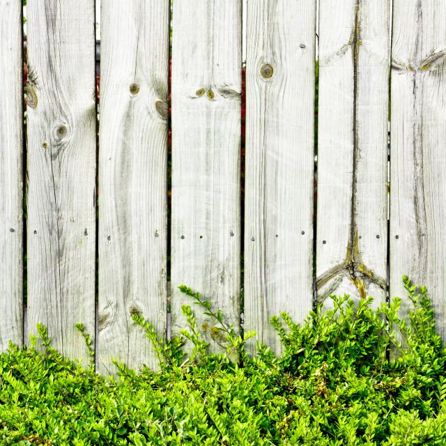 """""""Fence panels"""" stock image"""