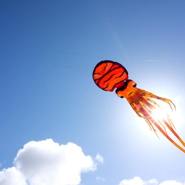 """Octopus Kite"" stock image"