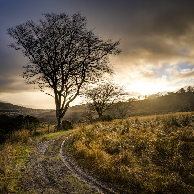 """The path from Knock Hill"" stock image"