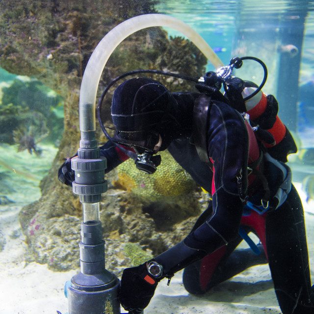 """""""works under water"""" stock image"""