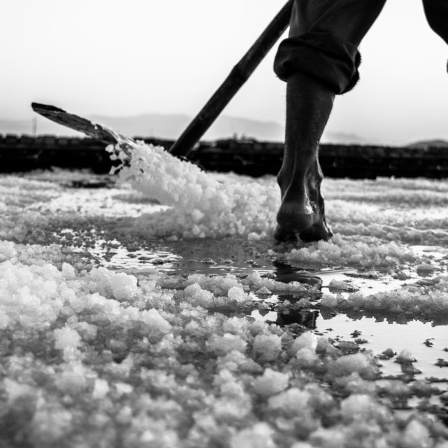 """Salt harvesting"" stock image"