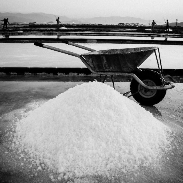 """Salt harvesting"" stock image"