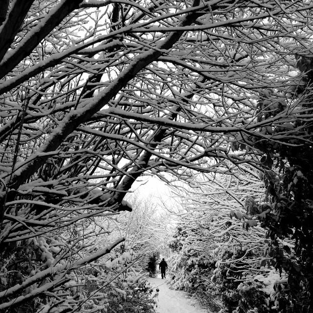 """Walking in a Winter Wonderland"" stock image"