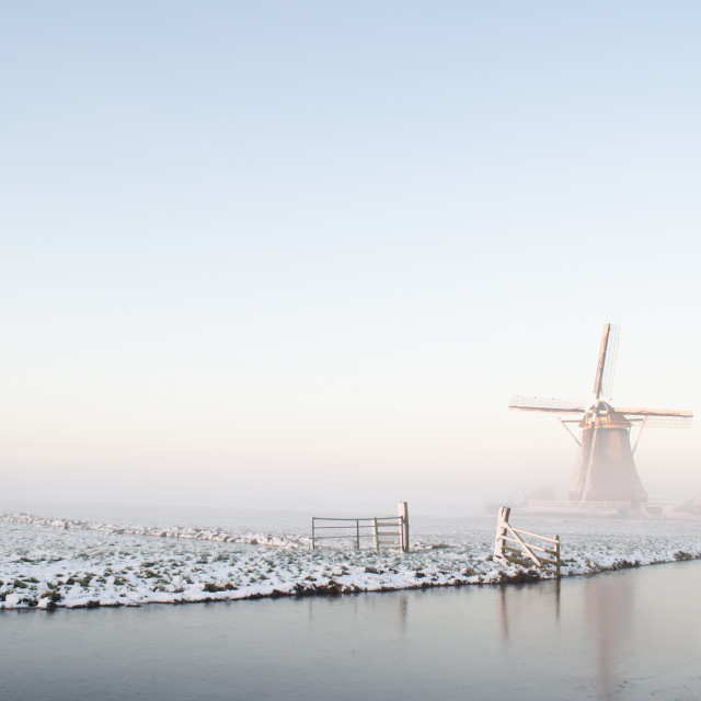 """Winter windmill landscape in Holland"" stock image"