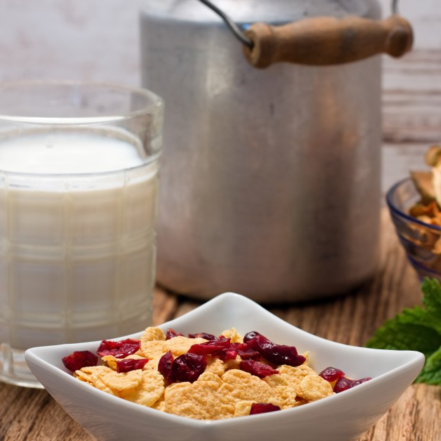 """Cornflakes with dried cranberries in square bowl"" stock image"