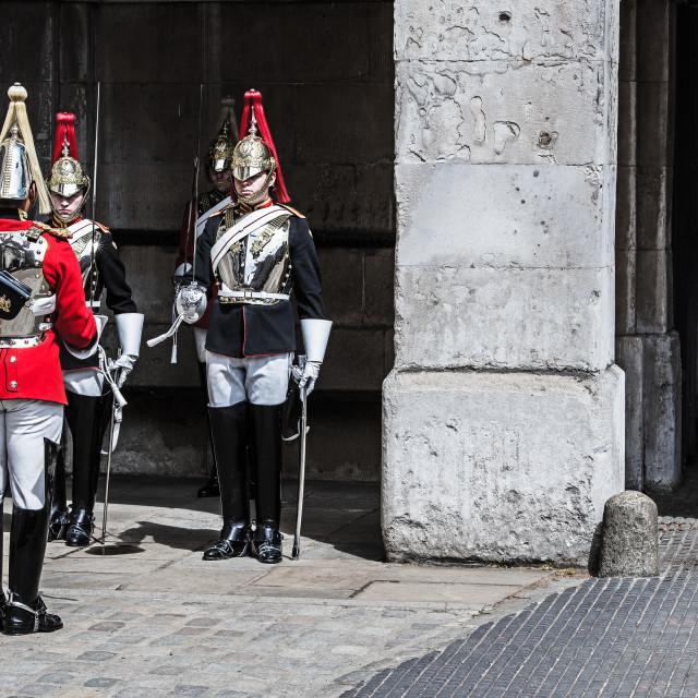 """""""Royal Guard"""" stock image"""