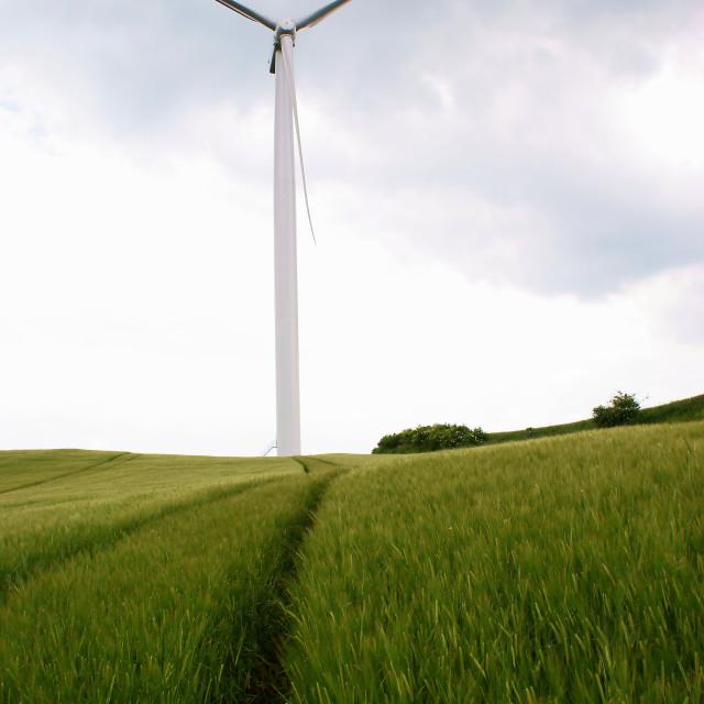 """Wind power plant"" stock image"