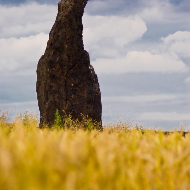 """""""Menhir"""" stock image"""