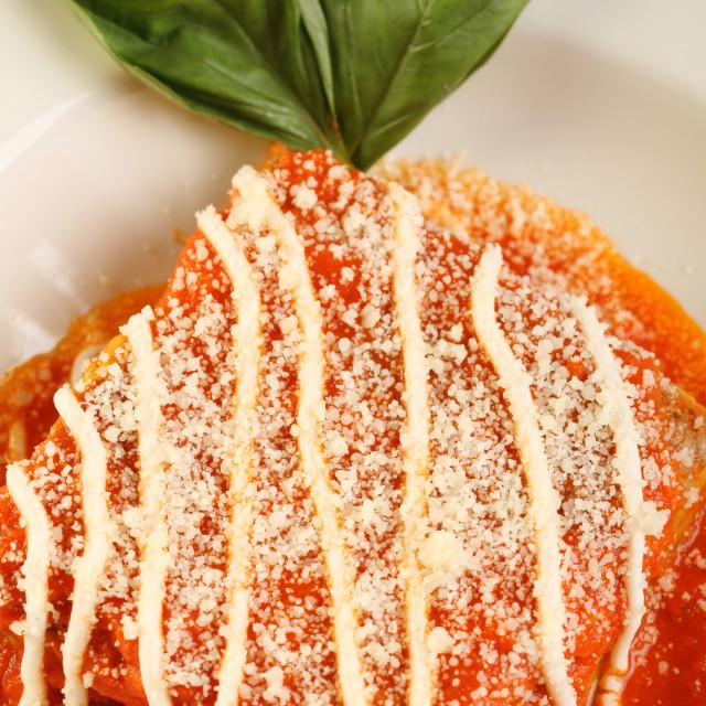 """Close up of Italian lasagna"" stock image"