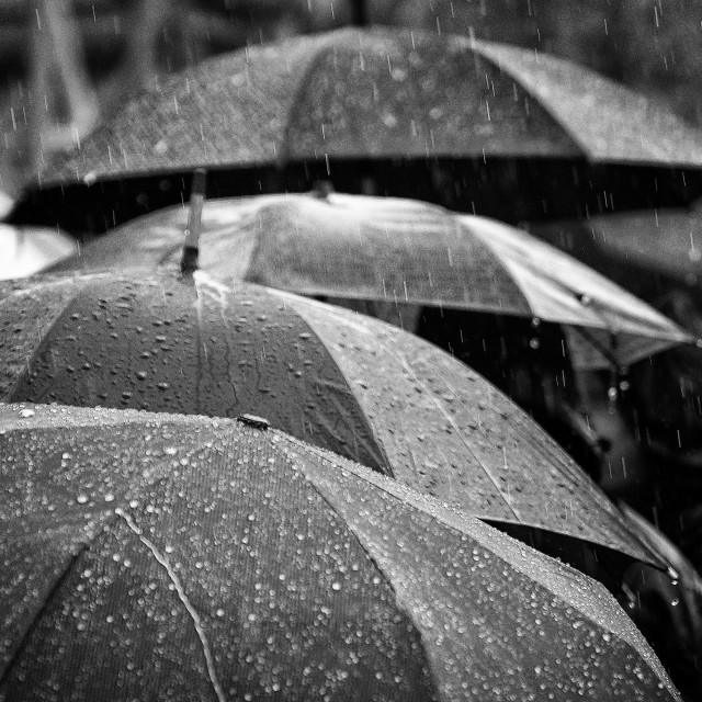 """Roof of umbrellas"" stock image"