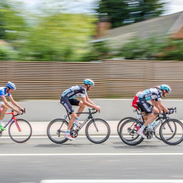 """""""Racing Cyclists"""" stock image"""