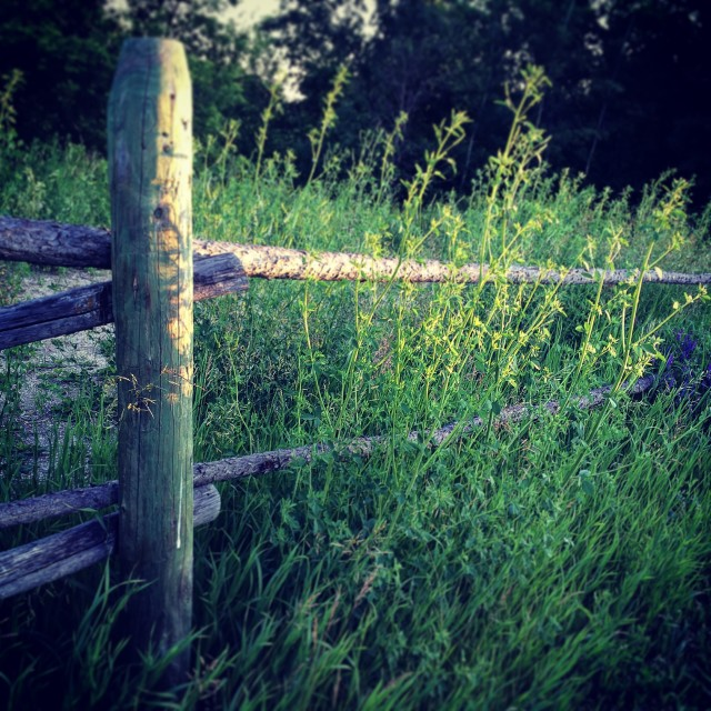 """Country fence"" stock image"