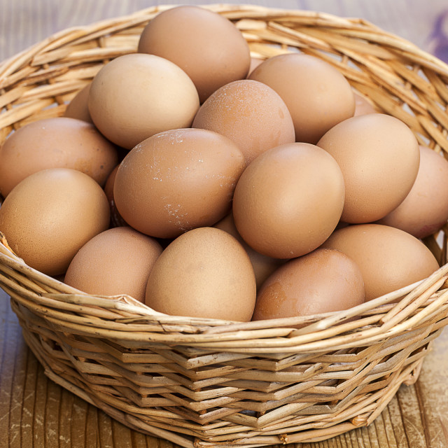 """""""Egg's in one Basket"""" stock image"""