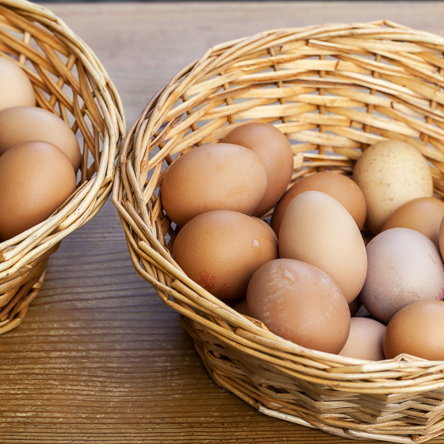 """""""Egg's in Two Basket"""" stock image"""