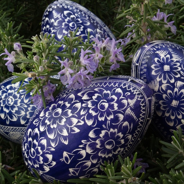 """Four Blue Eggs"" stock image"