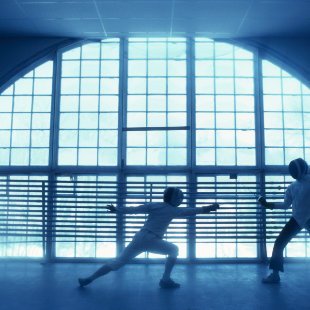 """Fencing Dartmoutn College."" stock image"
