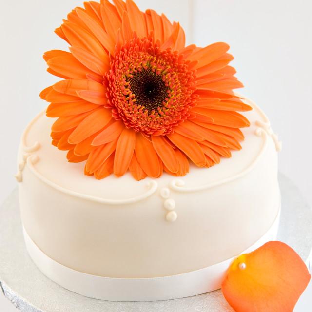 """Cake Topper"" stock image"