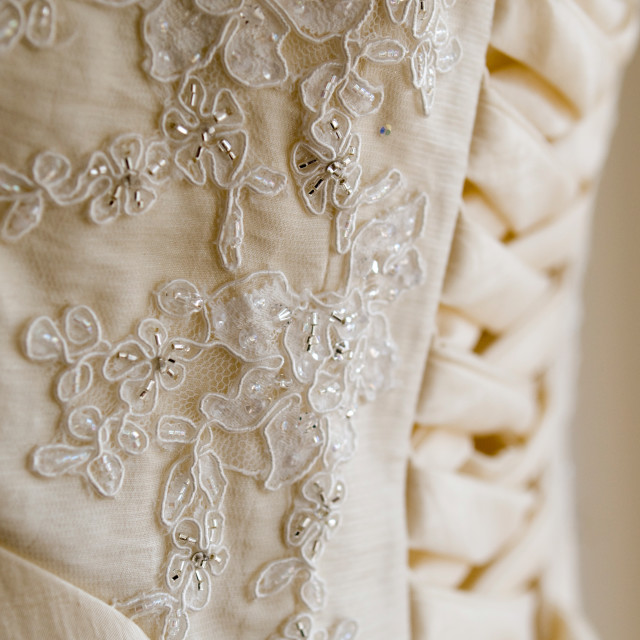 """Lace Detail"" stock image"