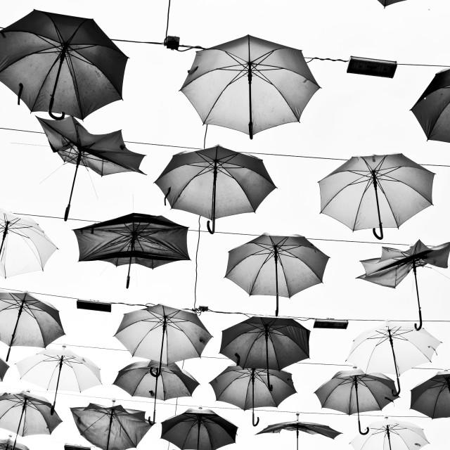 """Umbrellas"" stock image"