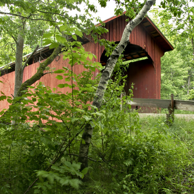 """Slaughter House covered bridge in Northfield, VT."" stock image"