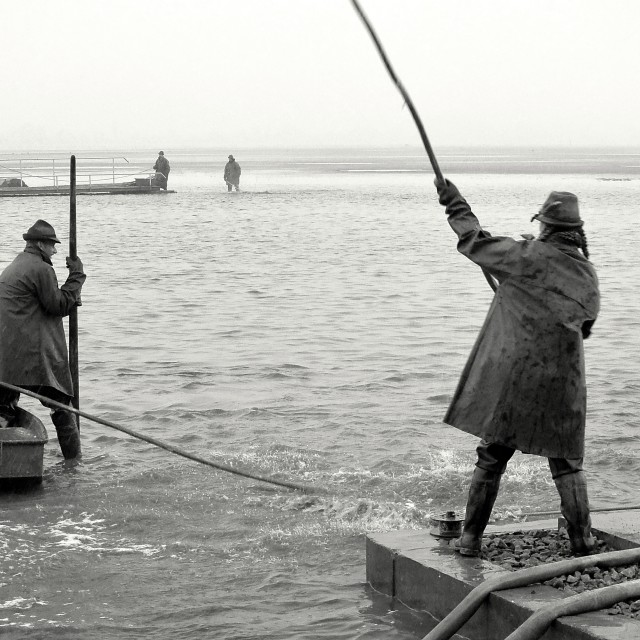 """""""Fishing Out 16"""" stock image"""