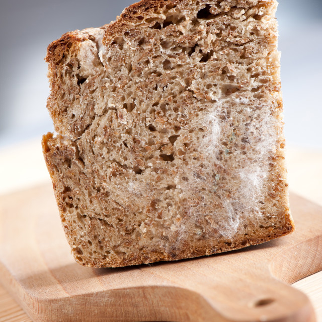 """Single moldy bread portion"" stock image"