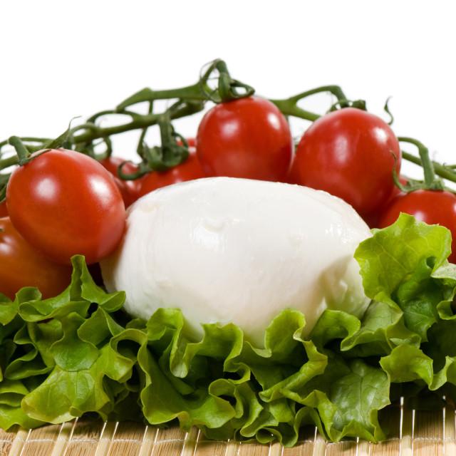 """""""mozzarella with lettuce and tomato"""" stock image"""