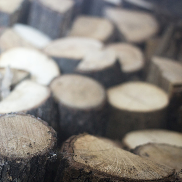 """Chopped firewood for house fireplace"" stock image"