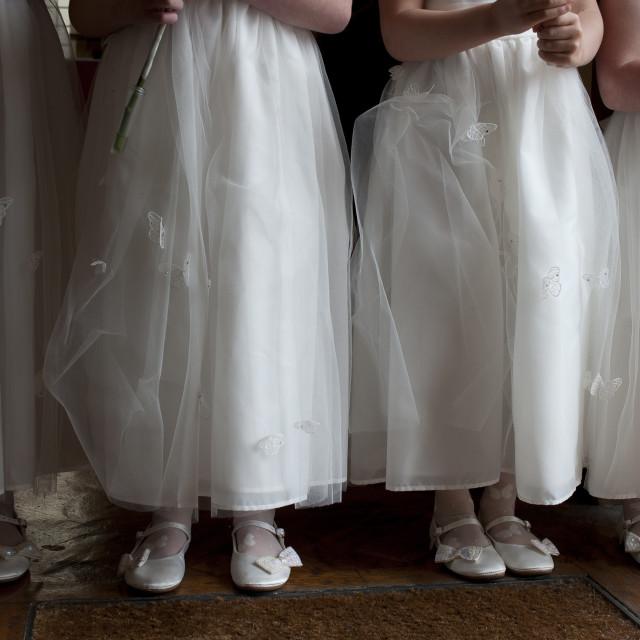 """Bridesmaids"" stock image"