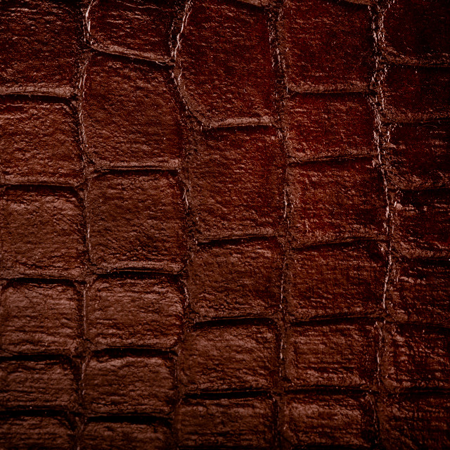 """""""Dark brown snake leather cloth"""" stock image"""