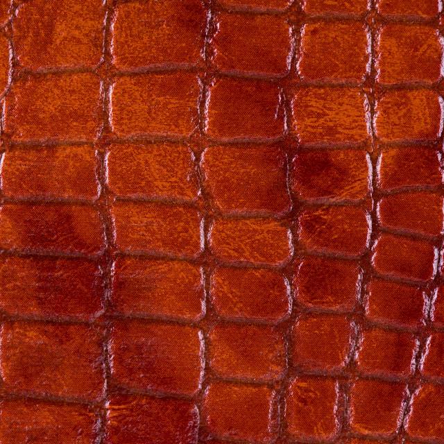 """Rusty snake leather cloth imitation"" stock image"