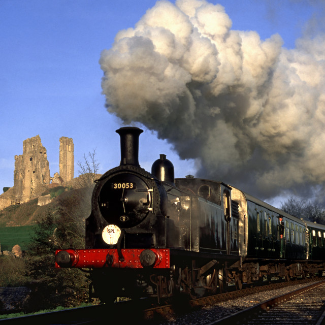 """Purbeck local passing Corfe Castle"" stock image"